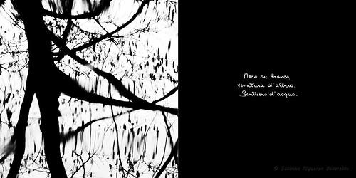 Calligrafie d'Anima (6)