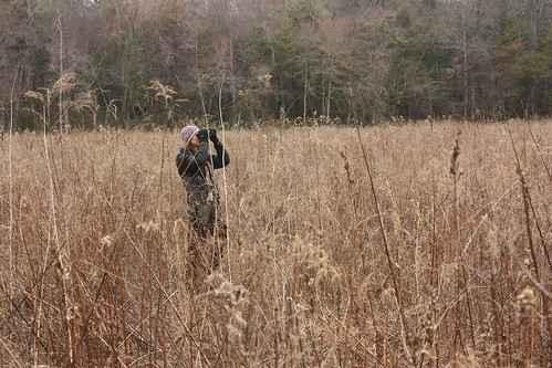 Service biologist Sue Cameron searches for birds | by USFWS/Southeast