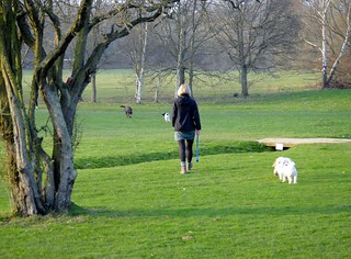 Earlswood Common Golf Course - Mar 2012 - Walking The Dog Can Be Fun | by Gareth1953 All Right Now