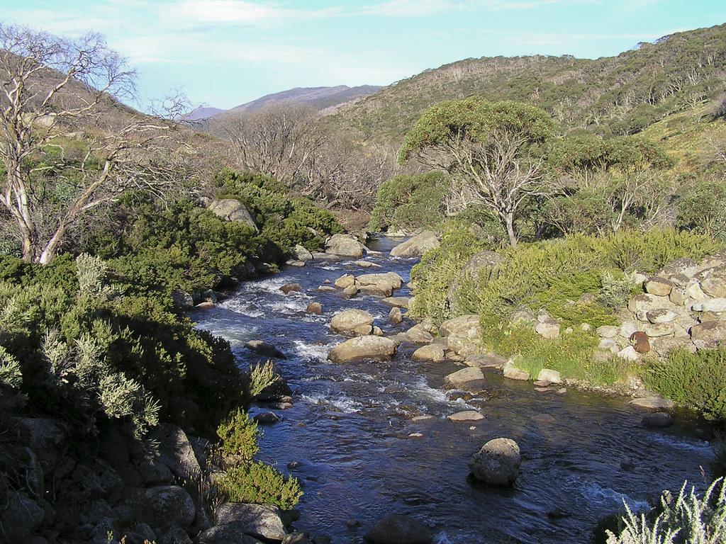 """Résultat de recherche d'images pour """"river Thredbo"""""""