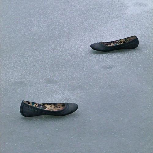 Cinderella Lost Her Shoes