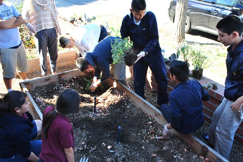 students planting | by EMAOnline