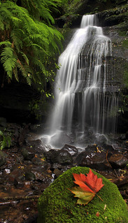 Autumn Waterfall || BLUE MOUNTAINS | by rhyspope
