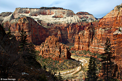 Zion Canyon from Observation Point Trail - Utah | by isaac.borrego