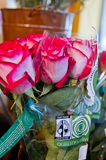 Fair Trade Certified Roses | by Fair Trade Certified