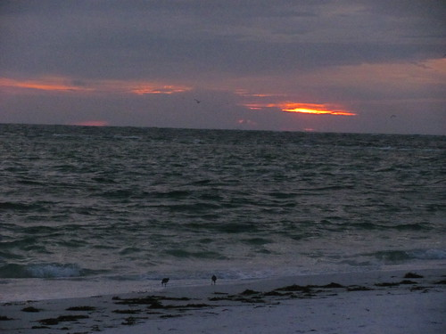 Anna Maria Island | by EvelynGiggles