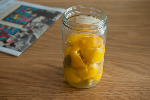 preserved meyer lemons | by sassyradish