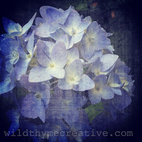 Pace yourself | by wild thyme