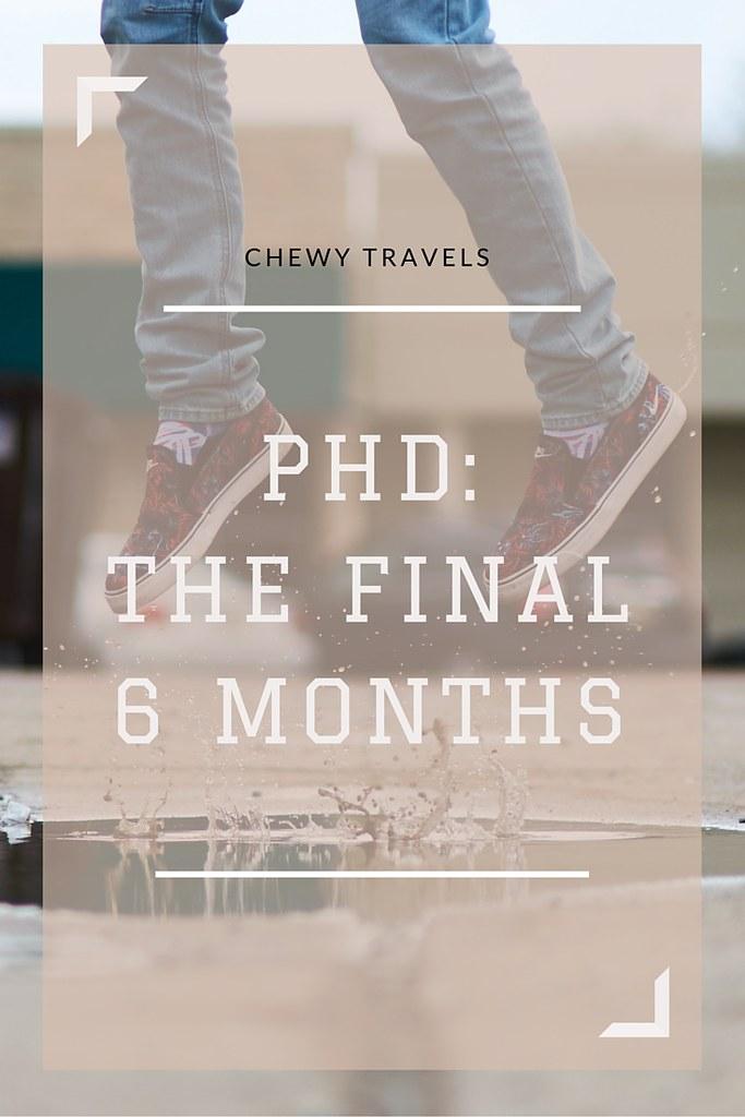 PhD: the final 6 months