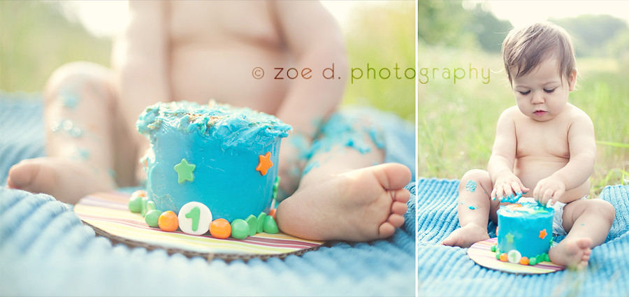 one year old baby birthday smash cake photo session in pla Flickr