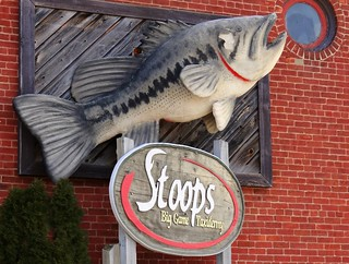 IN, Mulberry-IN 38 Stoops Big Game Taxidermy Sign | by Alan C of Marion,IN