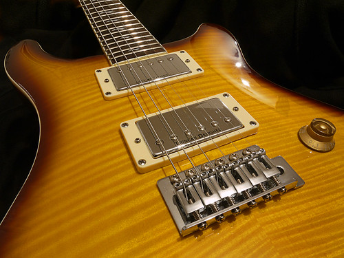 Guitar pickups | by Givus McCamera