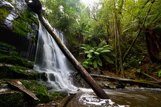 Lower Lilydale Falls, Tasmania | by Matty7D