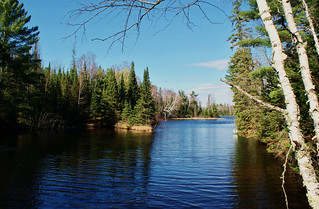 Spring into the Northwoods | by chumlee10