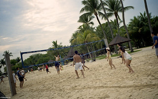 Volleyball on the beach | by The91