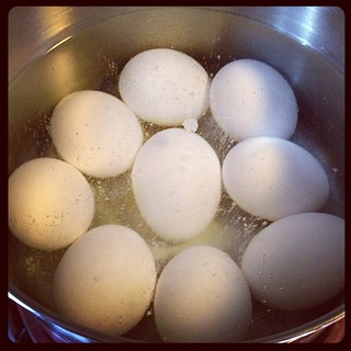 Trying the magic baking soda trick for hard boiled eggs. I'm going myth busters up in here... | by Hollywouldifshecould