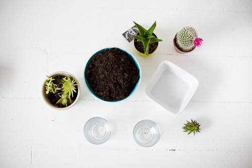planting | by Vanilla and lace