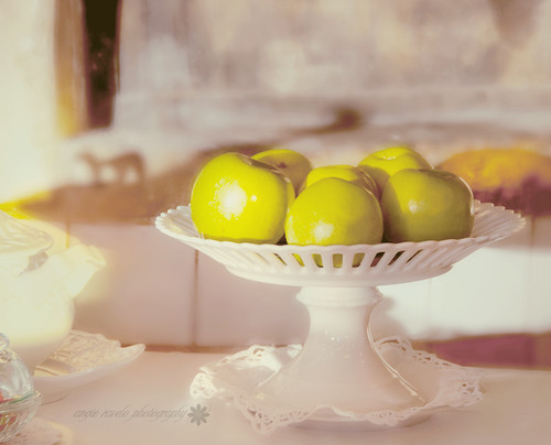 Five apples in winter sunlight... | by Angie Ravelo Photography