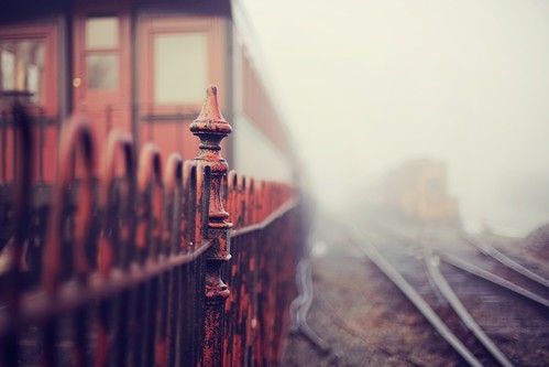 Mystery train | by Thuyhn