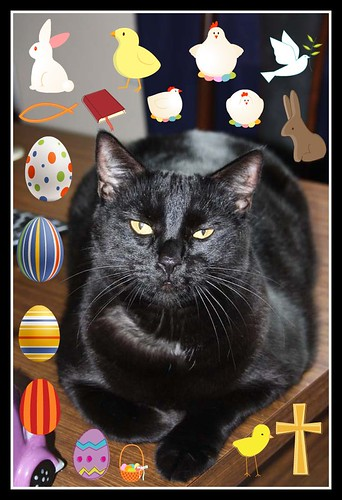 Happy Easter From Blacky!! 8/4/2012.. | by Michelle ~ Blacky ~ Champaz's Captures....