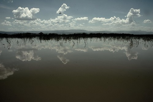 Reflection Kenya | by Jeff Borda