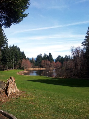 Golf course at Skamania Loudge | by eugeni_dodonov
