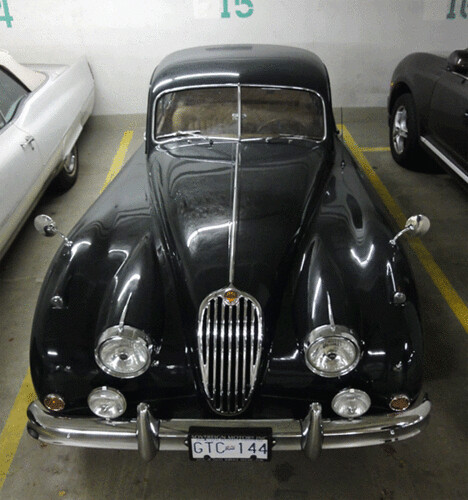 1954 Jaguar Xk140: Animated Gifs Are Fun. Check The