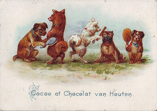 CACAO VAN HOUTEN - ANIMALS ACTING AS HUMANS - 5 DOGS GROOMING ONE ANOTHER WITH COMBS AND HAIR BRUSHES - VH2-13-4 | by patrick.marks