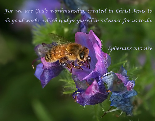 Picture Quote On Ephesianns 210 Niv: Ephesians 2:10 Niv