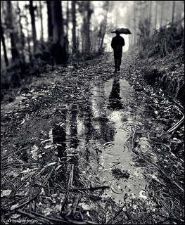 Raindrops keep falling on my head | by Guillermo Carballa
