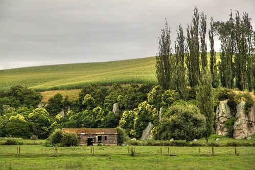 Old barn, Piarere, Waikato, New Zealand. | by brian nz