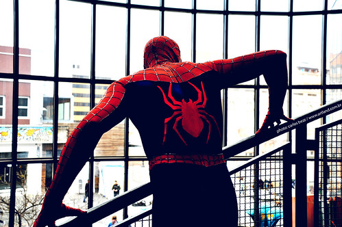 spiderman | by artland