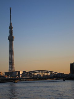 Late Afternoon Sky Tree 7 | by Sublight Monster