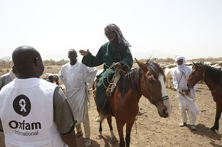 "Chad Food Crisis: ""The water level has dropped dramatically since last rainy season"" 