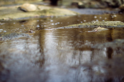 Creek [03.18.12] | by Andrew H Wagner | AHWagner Photo