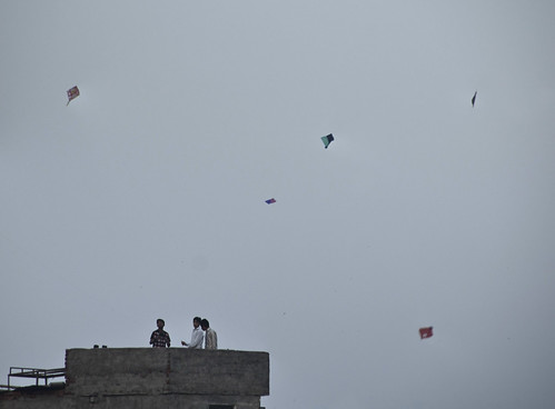 Kites At Dusk