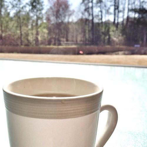 Afternoon Tea Garden Room York