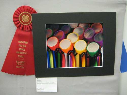 2012 Winterfest Amateur - Second Place | by chelmsfordpubliclibrary
