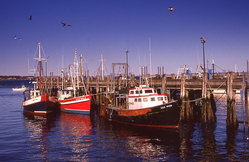 Fishing Boats, Provedence, Cape Cod | by morgandelt