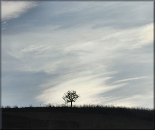 loneliness | by Angela@
