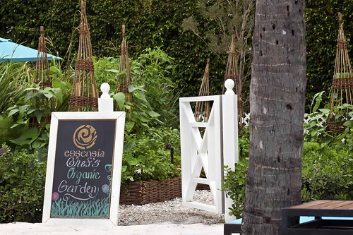 Essensia Garden Entrance | by thepalmshotel