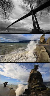 Windy Stanley Park | by orbital-vancouver