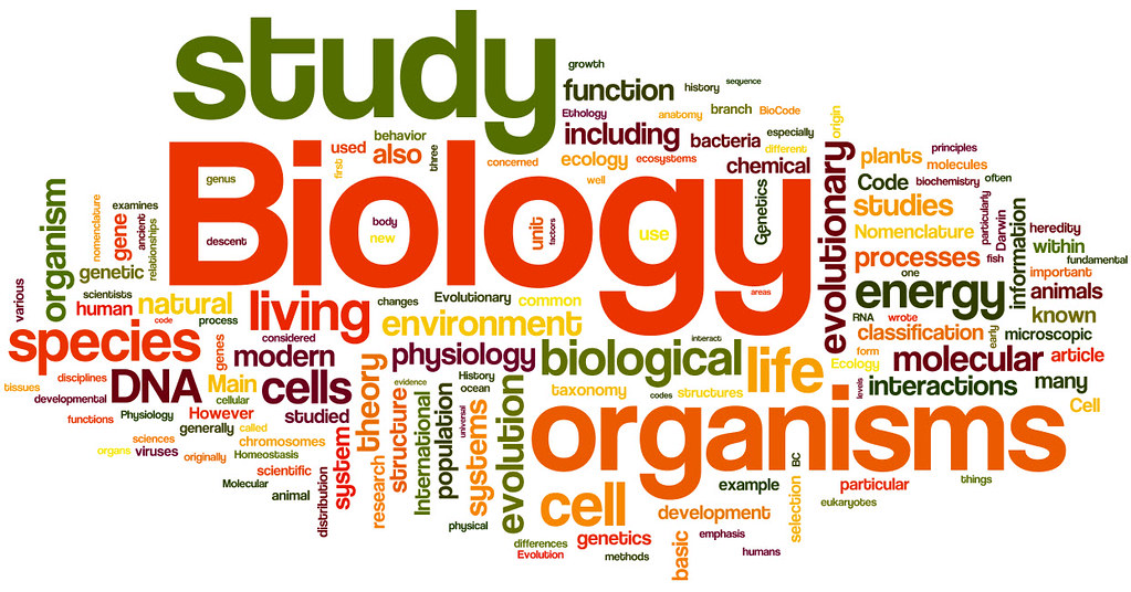 Image result for biology word cloud