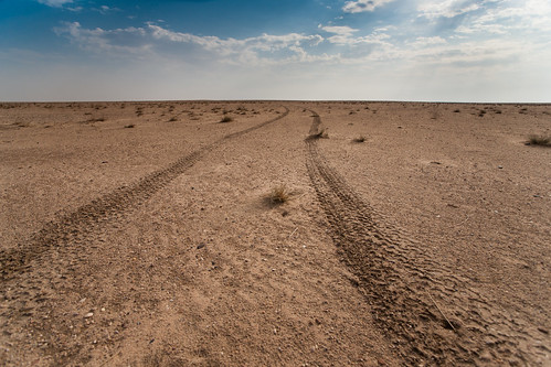 Tracks of a lone traveler | by Ahmad Alfahad