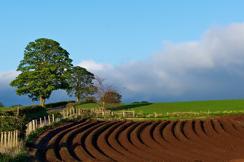 A curve in the field | by Photographic View Scotland