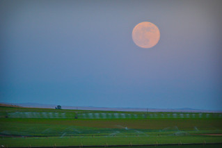 Moonrise over Farm Country [Explored - 3 June 2012] | by Michael E(xplorator) S.