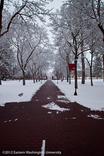 2012 March Snow-076.jpg | by Eastern Washington University
