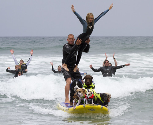 Dad, daughter and doggie tandem surf ride | by San Diego Shooter