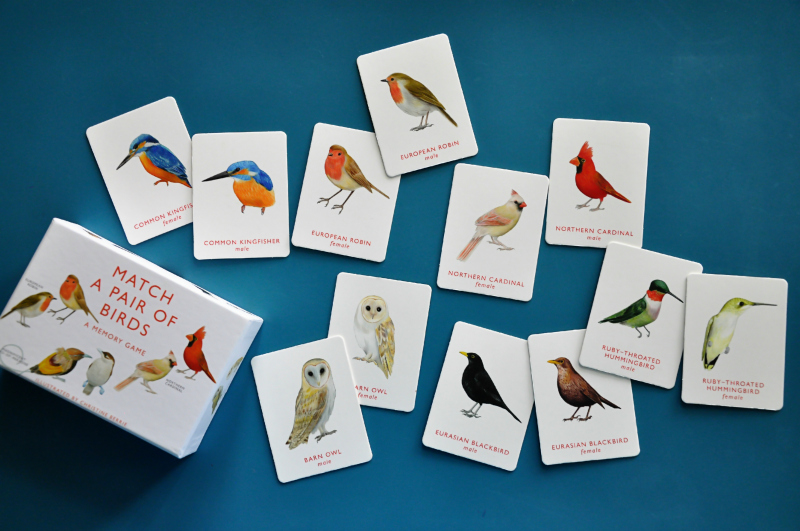 Bird Matching Game @ Mt Hope Chronicles
