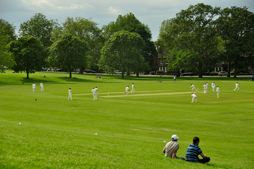 Cricket Hilly Fields | by beenbrun